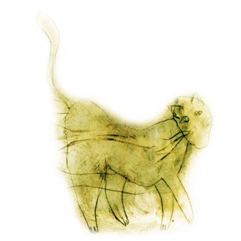 Zoom sur Le livre de Babou le chat