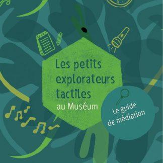 sur la couverture verte, on devine des objets, une torche, une boussole, un carnet, et des notes de musique,